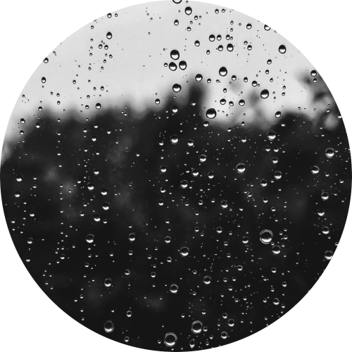 Regenachtige maandagochtend | Marvindereuver.nl