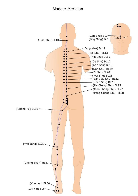 studie acupressuur