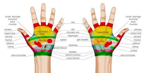 online cursus handreflexologie