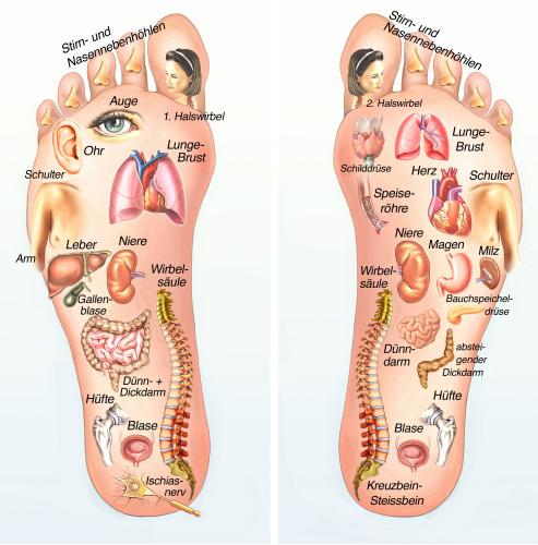 thuisstudie voetreflexologie