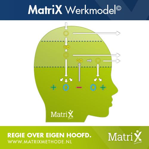 MatriXwerkmodel en MatriXemotiemodel