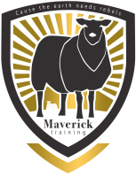 maverick training amersfoort