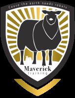 maverick training amersfoort 1 1