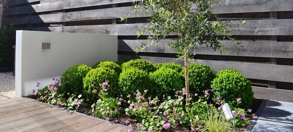Wat kost een tuin gebruik deze handige berekening for Klein tuin uitleg