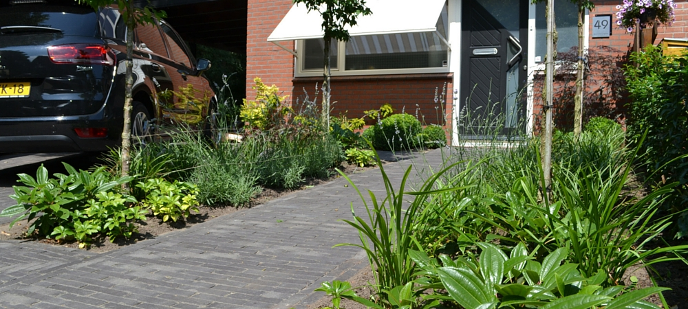 pin voortuin moderne tuin design tuinaanleg tuinontwerp genuardis portal on pinterest On moderne tuinuitleg