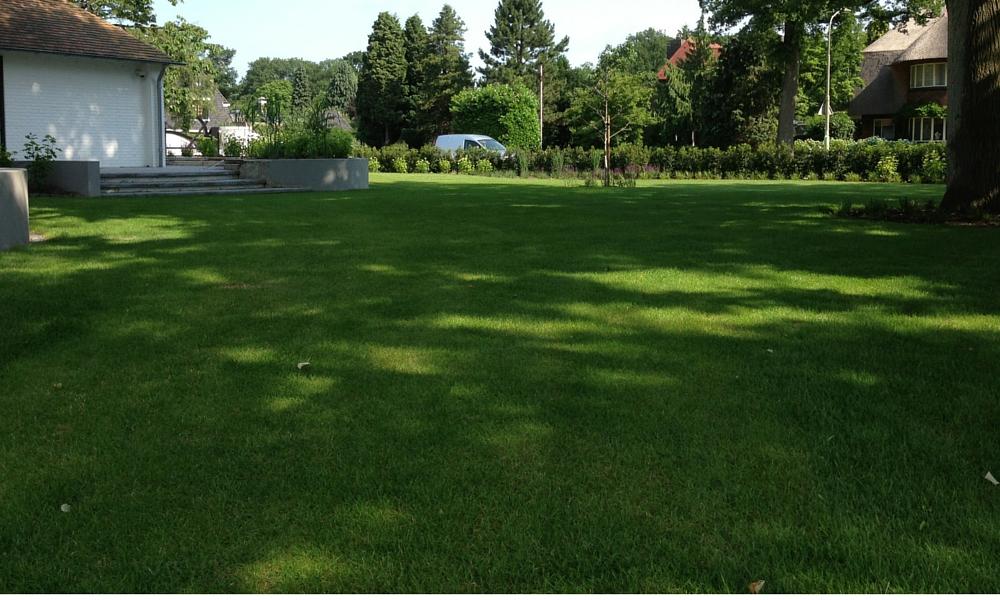 Wateroverlast Tuin Kleigrond : Wanneer moet ik kalk strooien tuin bemesten