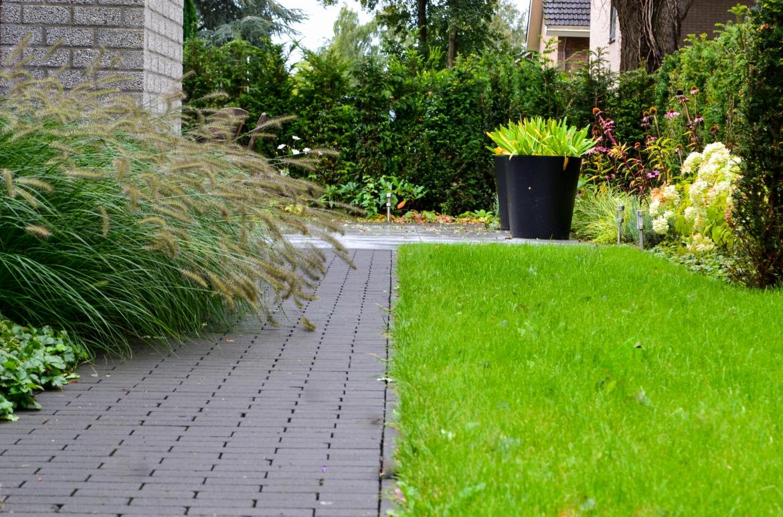 Aanzicht moderne tuin met siergrassen, gazon en beplanting