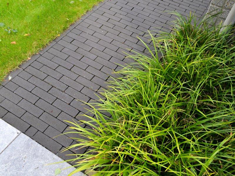 Betonklinkers met siergrassen en keramische tegels in moderne achtertuin