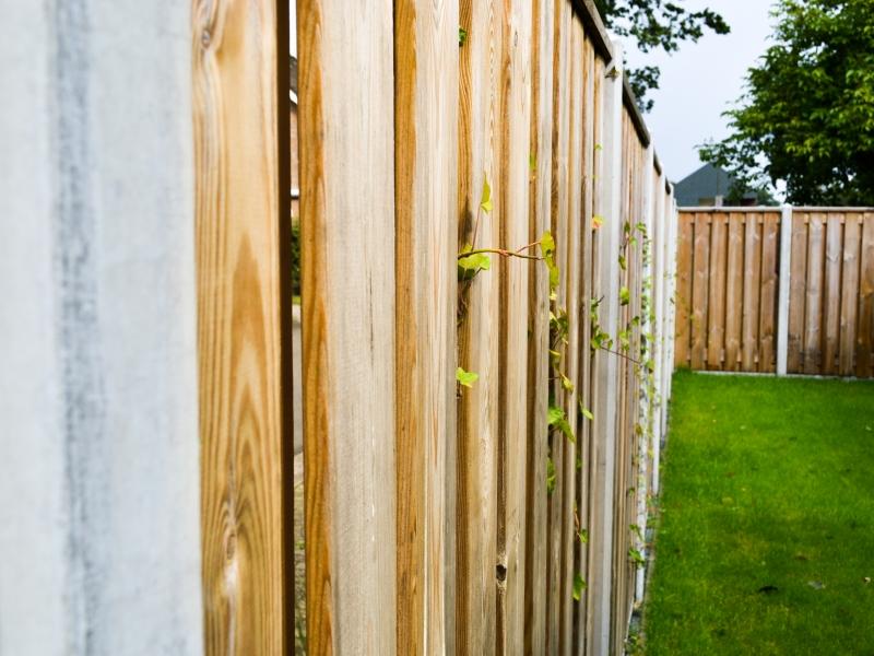 Hout en beton schutting met klimplanten begroeid