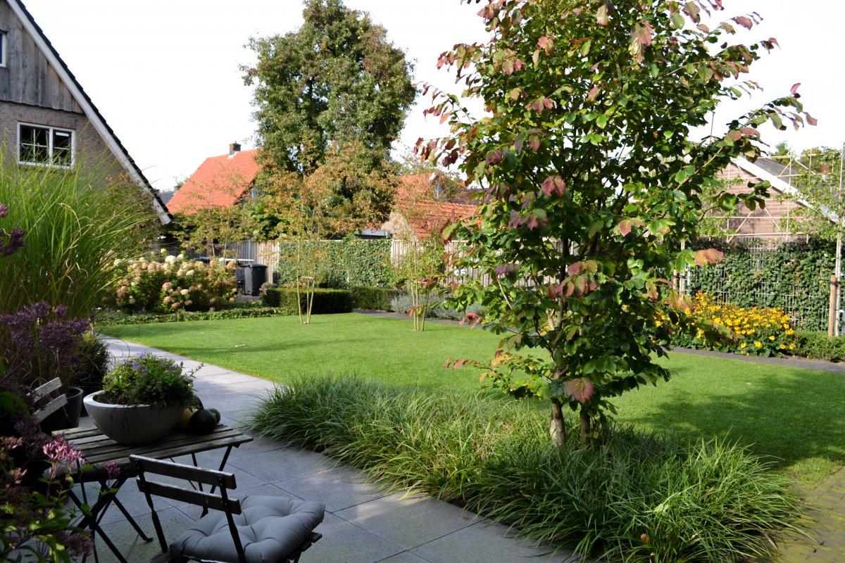Mijn visie op moderne tuinen peter mecklenfeld