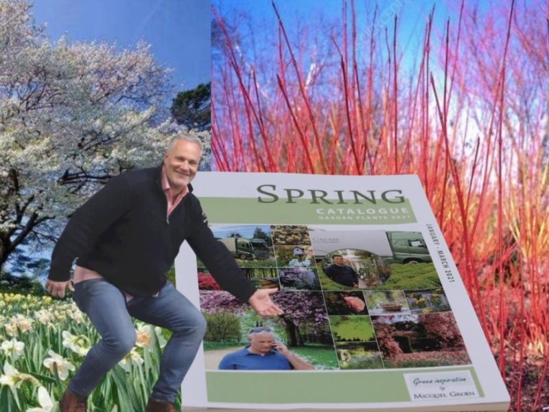 Micquel Groen Green Inspiration january colour your garden