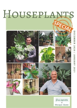 Houseplants special catalogue.