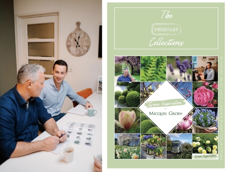 Monthly Catalog The Collections February Micquel Groen Green Inspiration.