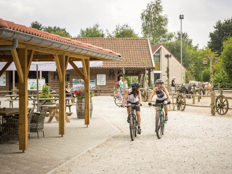 Landal Sluftervallei nr 34 paarden fietsen MijnVakantiehuisJouwVakantiehuis.nl