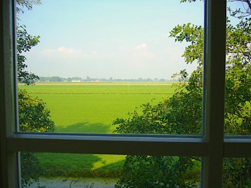 Uitzicht studio Hortensia Appartementenboerderijnieuwesluis.nl