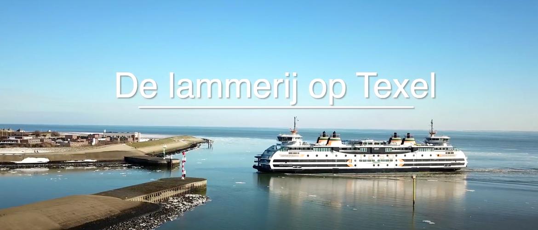 De lammeren op Texel - deel 1
