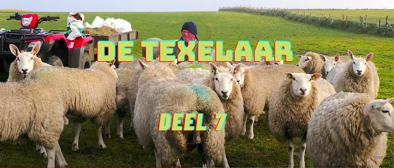Deel 7: De Texelaar