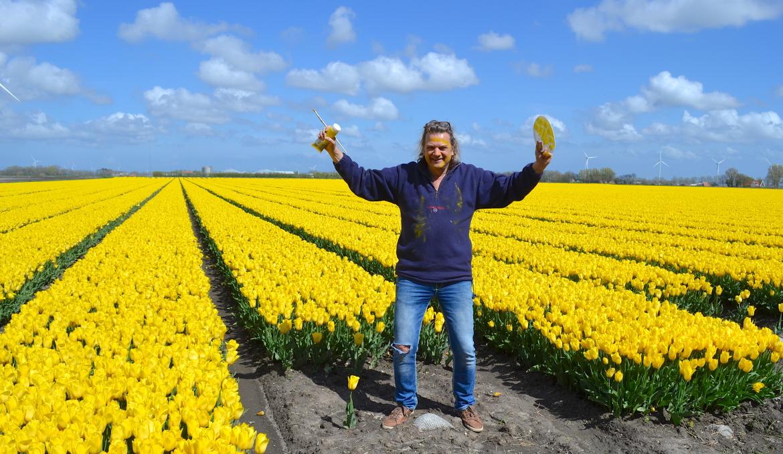 Ed Pach MijnVakantiehuisJouwVakantiehuis.nl tulpen geel