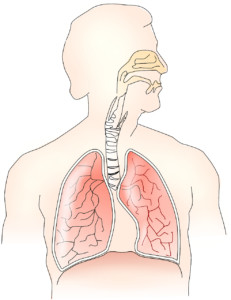 The influence of stress on hyperventilation