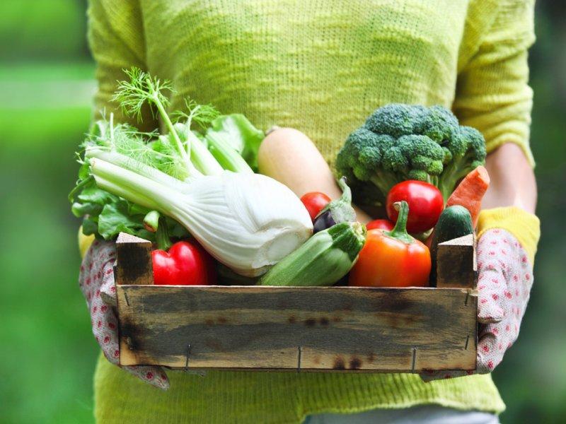 biologisch-eten