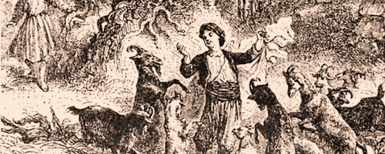 Koffie mythes met geiten