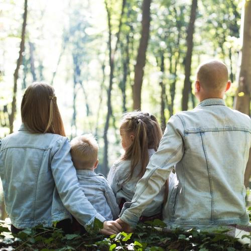 gezinstherapie bij moon consultancy in dordrecht