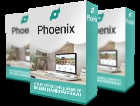 Phoenix website hulp