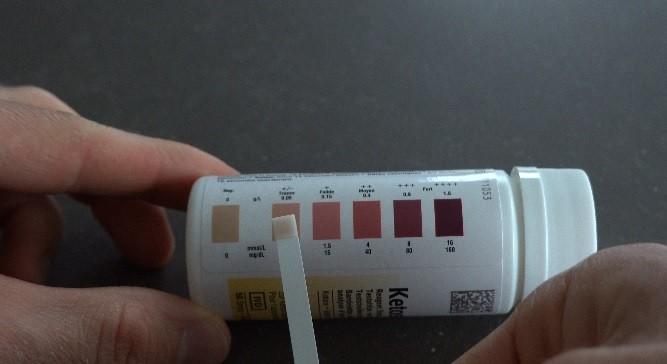 ketostix resultaat test ketogeen dieet
