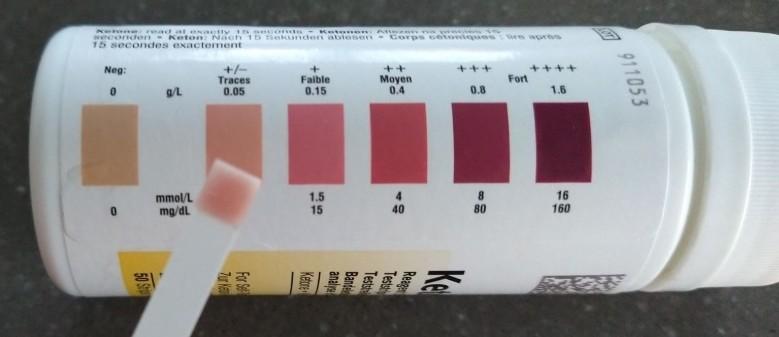 ketostix test ervaring