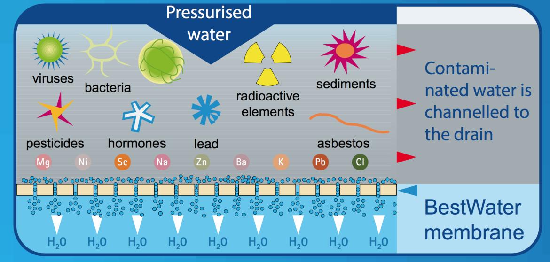 infogram-osmose-membraan