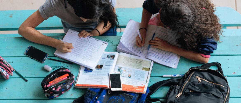 Hogere resultaten met studerend lezen is de crux voor het onderwijs