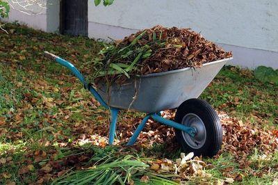 Kruiwagen bladverwijderen tuin