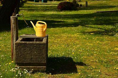 mierenpoeder oplossen in water