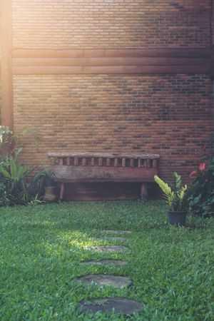 waar hortensia planten