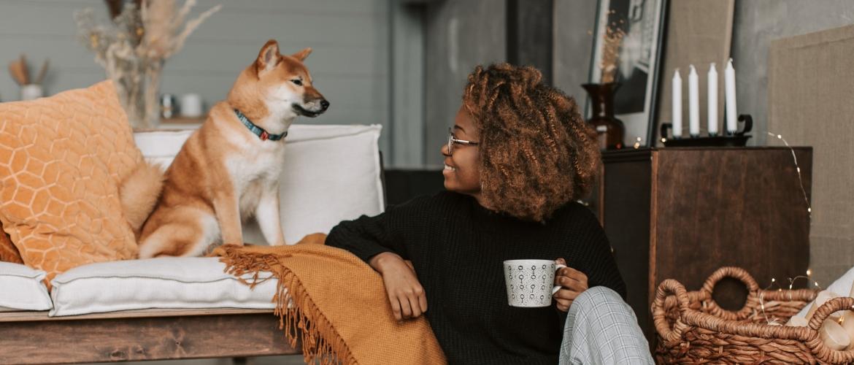 Gedraagt jouw hond zich druk en opdringerig bij visite?