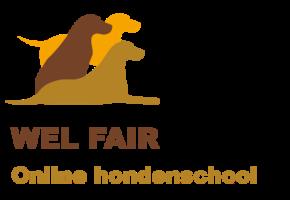 hondenschool gedragstherapie online