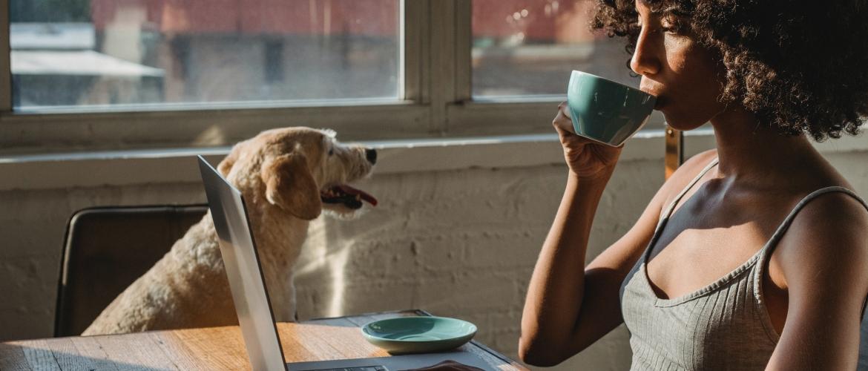 Lees dit artikel van Sylvia op Doggo.nl over de voor- en nadelen van online begeleiding.