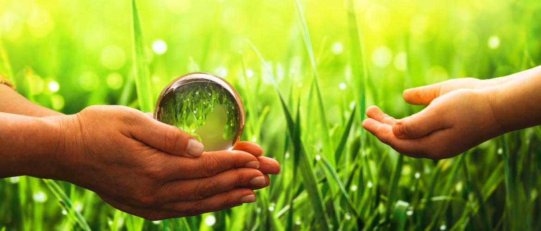 ISO 14001: van implementatie tot certificatie