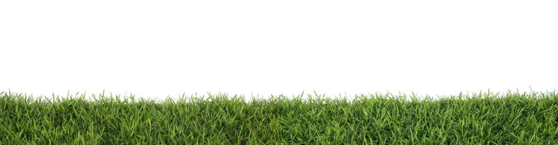 robot grasmaaier voor kleine tuin