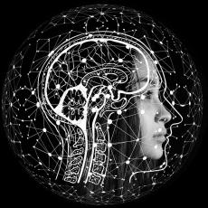Hoe kun je een persoonlijk ontwikkelingsplan met SMART doelen stellen om iets te veranderen in je leven? Alles wat je nodig hebt moet je uit je eigen brein halen om je mindset te verbeteren. In dit artikel leer ik je hoe!