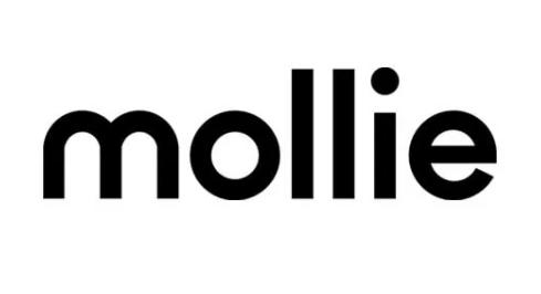 Wat is mollie payments en hoe betrouwbaar is het om er je online betalingen mee te doen als ondernemer?