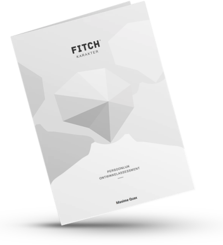 Fitch Assessment