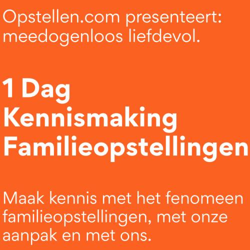 1 Dag kennismaking familieopstellingen