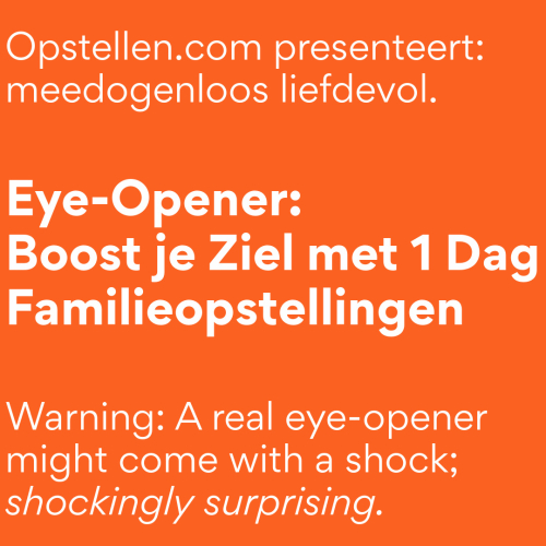 Eye-Opener: Boost je Ziel met 1 Dag Familieopstellingen