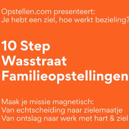 De Familieopstellingen Wasstraat: The 10 Step Soul Challenge