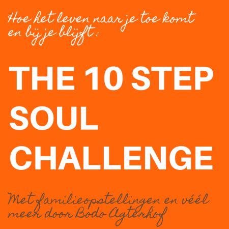 The 10 Step Soul Challenge www.opstellen.com