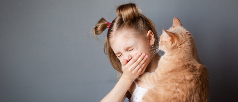 Alles over allergie: wat is allergie?