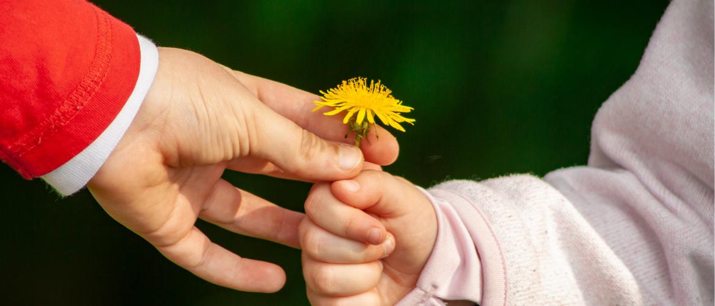 Wat is zorg in natura: alles wat je moet weten over zorg in natura