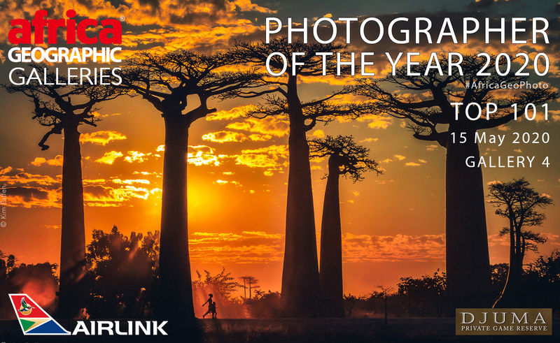 Africa Geographic Photographer of the Year finalist with Madagascan Baobab photo