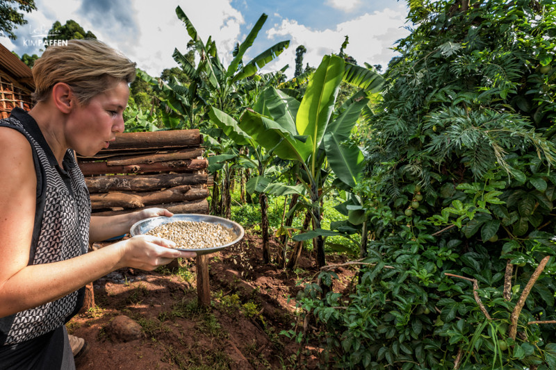 Coffee plantation visit local community Uganda